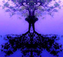 Tree of Reflection Sticker