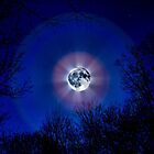 Blue Moon by DHParsons