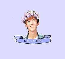 Luhan EXO Flower Crown Ribbon Banner by blue-eyedmagic