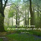Trees are Poems by Charmiene Maxwell-batten