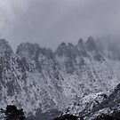Marions Lookout & Cradle Mountain by Garth Smith