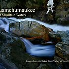 Asquamchumaukee Calendar Cover by Wayne King