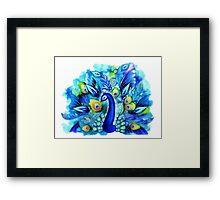 Peacock in Full Bloom Framed Print