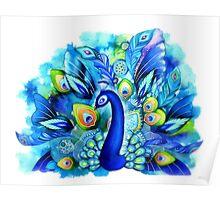 Peacock in Full Bloom Poster