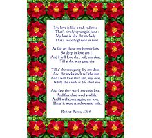 """""""My love is like a red, red rose"""" - Burns (anglicised) Photographic Print"""