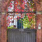 Garden gate in Autumn, Perugia, Italy by Philip Mitchell