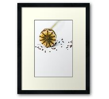 Future Poppies Framed Print
