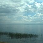 The magic of the lake by Maria1606