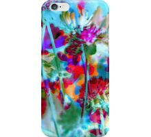 Secret Garden II iPhone Case/Skin