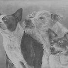 Terrier Trio by Pam Humbargar