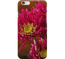 Magenta Daisies Against Old Gold iPhone Case/Skin