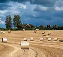 Hay Bales & Storm Clouds by mikebov