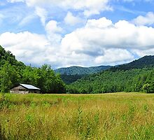 The Big Meadow in the Cataloochee Valley, GSMNP  by Bill Shuman