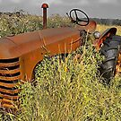 Rusted Tractor by sundawg7