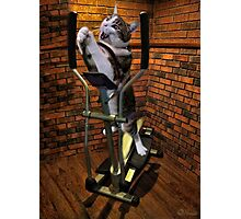 """MOM BRING ME SOME WATER THIS WORKOUT IS KILLING ME"" CAT-FELINE EXERCISE PICTURE/CARD Photographic Print"