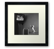 Mutzy Watching Triumph Of The Will  Framed Print