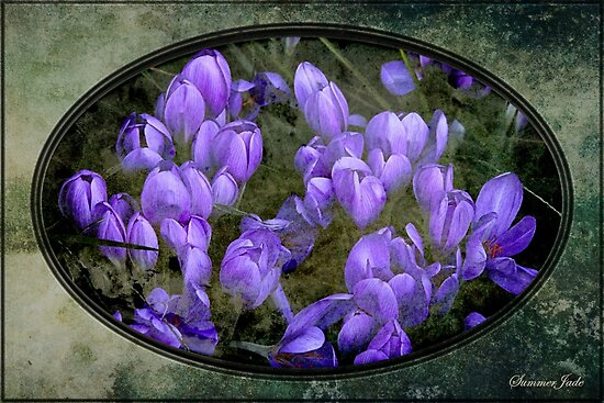 Faded Souvenir of a Long Ago Spring by SummerJade