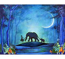 Elephant Walk Photographic Print