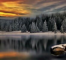 Snowy Landscape  by sojournstar