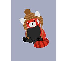 Collin the Beanie-Wearing Red Panda Photographic Print