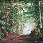 Shaded path through woods by Dan Wilcox