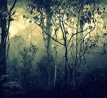 Stillness Speaks by Kitsmumma