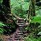 Steps and Staircases Winner - Michael John