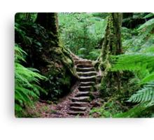 Rainforest Steps Canvas Print