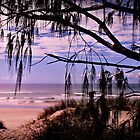 Woodgate Beach.  Australia's best kept secret by myraj