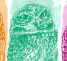 Colorful owlets - el buono el brutto el cattivo  Sticker