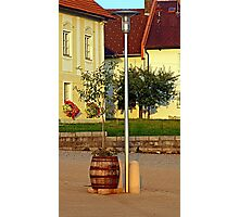 Tree in apple wine barrel   conceptual photography Photographic Print