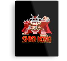 Shao Kong Metal Print