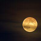 Perigee Moon - August 10 2014 © by © Hany G. Jadaa © Prince John Photography