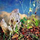 Wild World by Christine Lake