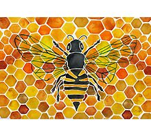 Honeybee Photographic Print