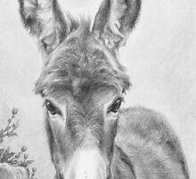 I'm All Ears by Sami Thorpe
