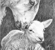 Mothering Ewe by Sami Thorpe