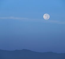 Morning Moon by Richard G Witham