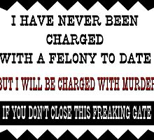 I have never been charged with a felony to date by MuleSense
