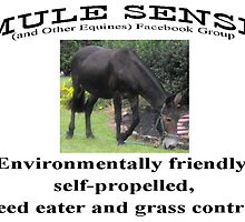 Environmentally friendly, self-propelled weed eater and grass control by MuleSense