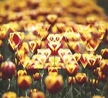 Tulip Trip by jessicajudge