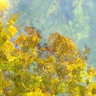 Reflections in Abstract by Tibby Steedly