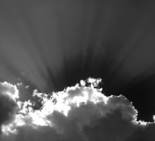 RAYS IN BLACK AND WHITE by Sandra  Aguirre