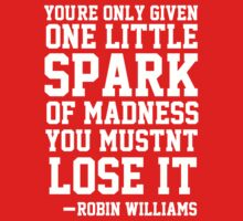 Robin Williams Quote - You're only given one little spark of madness, you mustn't lose it by howardhbaugh