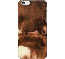 Wade on the water iPhone Case/Skin
