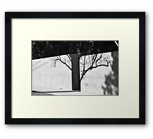 shadow tree Framed Print