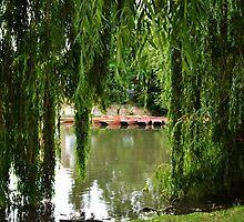Coe Fen, Cambridge by delilahdesanges