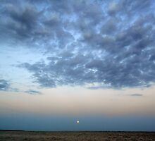the full moon of august 10 2014 rising over the great south bay, new york by arteology