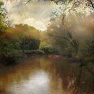 Morning at the River by John Rivera