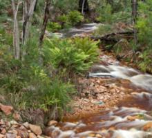 Little Stream flows through the Grampians National Park Sticker